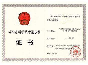 揭阳市科技进步奖证书